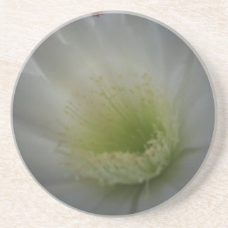 Flor blanca suave posavasos manualidades