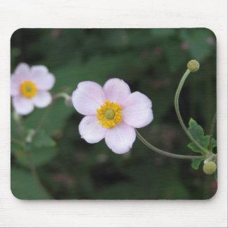 flor blanca tapetes de ratones