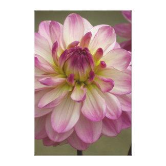 Flor blanca violeta hermosa impresión en lienzo