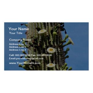 flor blanca y cactus fructífero del saguaro, Sonor Tarjetas De Visita