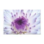 Flor blanca y púrpura impresión en lona