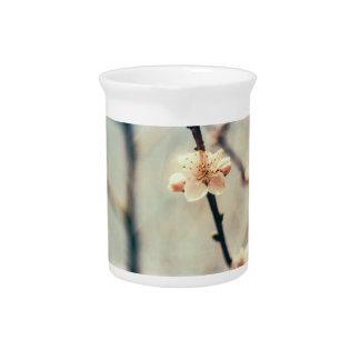 Flor blanco, árbol floreciente en primavera jarrón