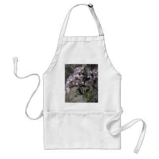 Flor blanco del árbol con una indirecta del rosa delantal