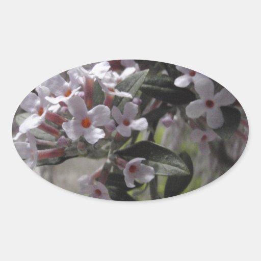 Flor blanco del árbol con una indirecta del rosa pegatina ovalada