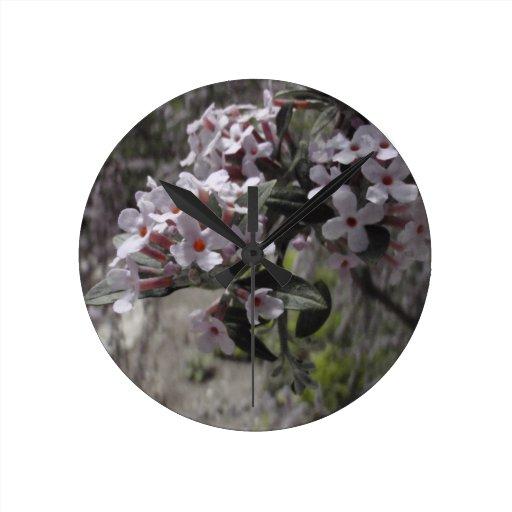 Flor blanco del árbol con una indirecta del rosa relojes de pared