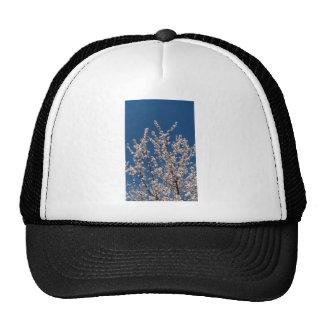 flor blanco gorro de camionero