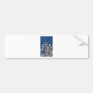 flor blanco pegatina para auto