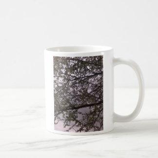 Flor blanco taza clásica