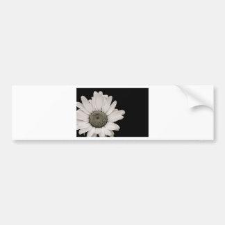 Flor blanco y negro de la margarita pegatina para auto