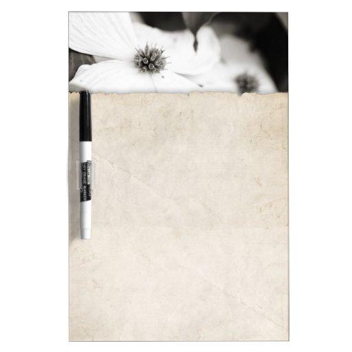 Flor blanco y negro del Dogwood Pizarra