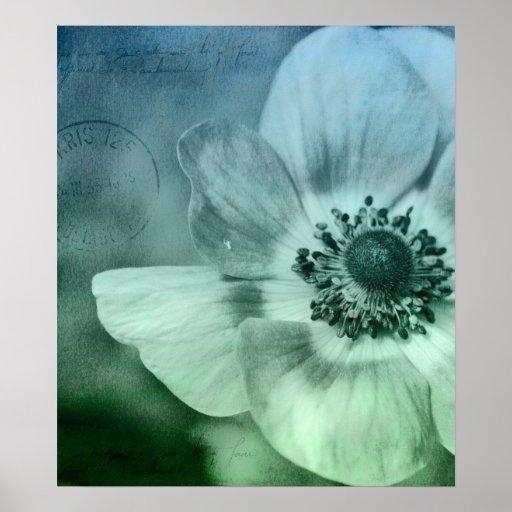 Flor bonita de la anémona impresiones