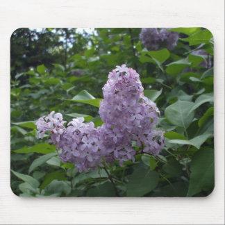 Flor bonita de la lila mouse pads