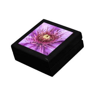 Flor bonita del Clematis púrpura Caja De Regalo
