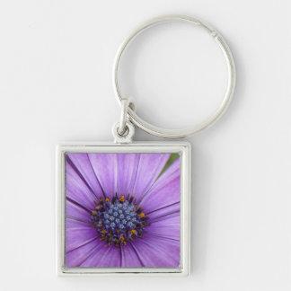 Flor bonita del jardín con los pétalos púrpuras llavero