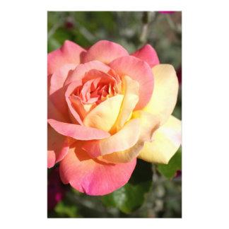 Flor bonita del rosa rosado y amarillo.  Floral Flyer Personalizado