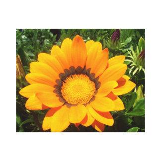 Flor bonita en lona lona envuelta para galerias