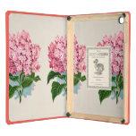 Flor botánica del Hydrangea