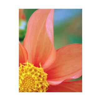 Flor brillante de la explosión impresiones en lienzo estiradas