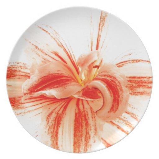 Flor brillante del Amaryllis Plato