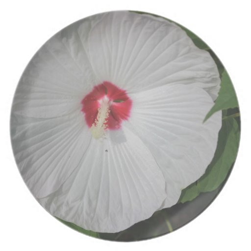 Flor brillante grande plato