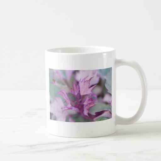 Flor brumosa de la mañana taza