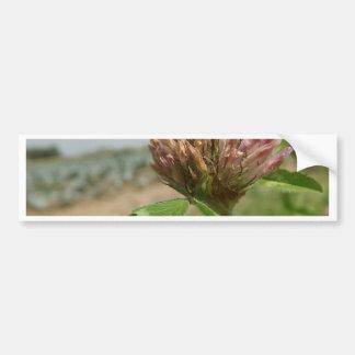 flor etiqueta de parachoque