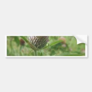 flor pegatina de parachoque
