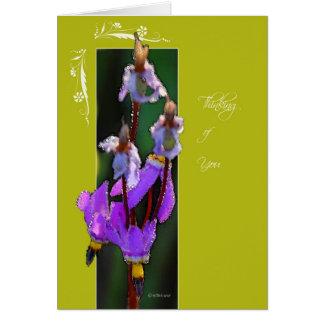 Flor capítulo - solsticio-ThinkingofYou Felicitación
