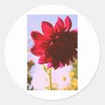 Flor carmesí pegatina redonda