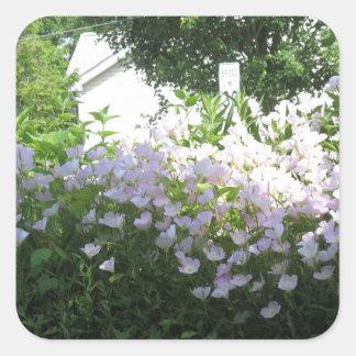 Flor CherryHill NewJersy NVN668 FU del jardín de Pegatina Cuadrada