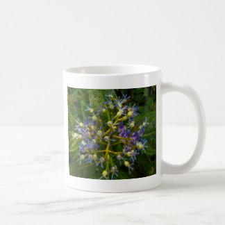 Flor china de la quinina taza clásica