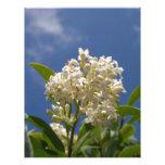 Flor color crema membrete personalizado