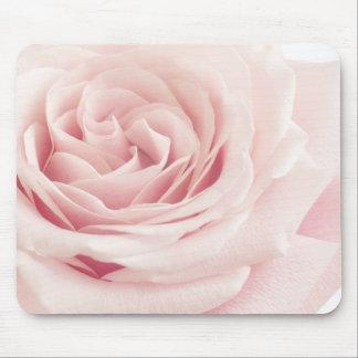 Flor color de rosa rosa clara - flores de los alfombrilla de ratones