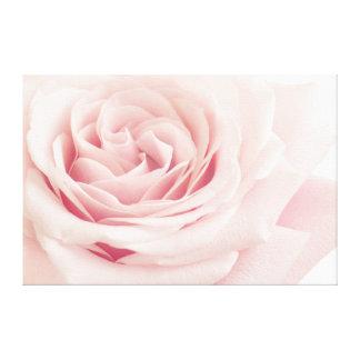 Flor color de rosa rosa clara - flores de los impresión en lienzo