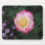 Flor color de rosa rosada alfombrillas de ratón