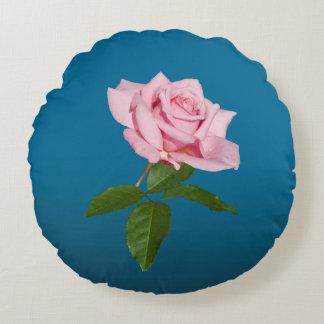 Flor color de rosa rosada con los descensos de cojín redondo