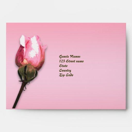 flor color de rosa rosada de la antigüedad del rsv sobres