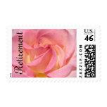 Flor color de rosa rosada de los sellos del retiro