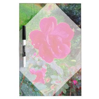 Flor color de rosa rosada fucsia en la floración pizarra blanca