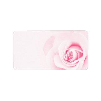 Flor color de rosa rosada romántica hermosa floral etiquetas de dirección