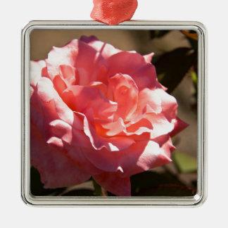 Flor color de rosa rosado ornamento para reyes magos