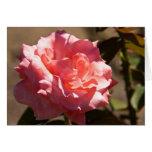 Flor color de rosa rosado tarjeta de felicitación