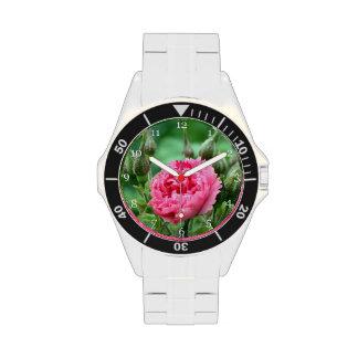 flor color de rosa salvaje rosada floral relojes de pulsera