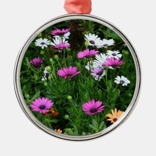 flor coloreada multi del campo de las margaritas ornaments para arbol de navidad
