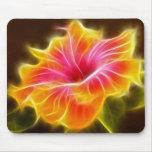 Flor colorida brillante del hibisco tapete de raton