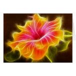Flor colorida brillante del hibisco tarjeta