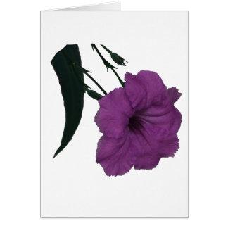 Flor colorized rosa mexicano de la petunia felicitación