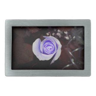 flor colorized rosa púrpura contra backgrou oscuro hebilla cinturón rectangular