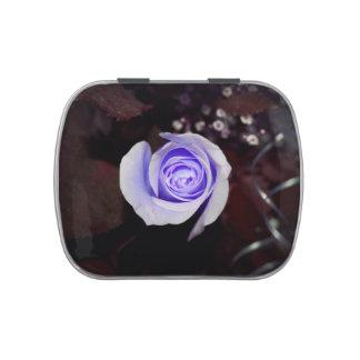 flor colorized rosa púrpura contra backgrou oscuro