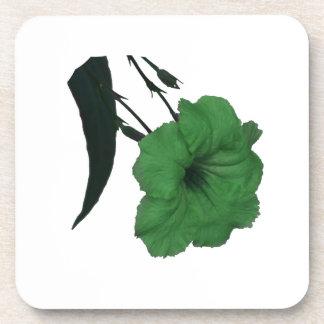 Flor colorized verde mexicano de la petunia posavasos
